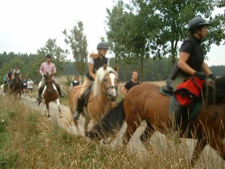 Dreikampf Ride & Tie 2006 Hitzacker Distanzreiten