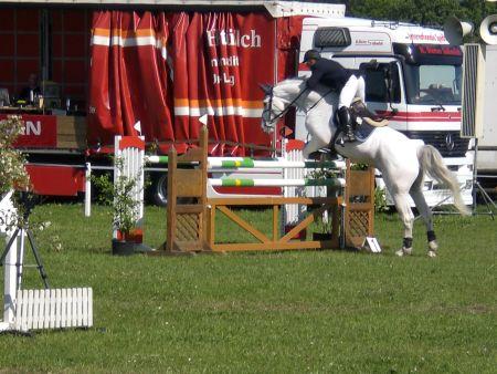 Springturnier Pferdeleistungsschau Wietzetze 2009 Turnier Hitzacker trabt voran PSV Hitzacker