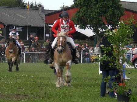 Springturnier 2009 Wietzetze Pferdeleistungsschau Hitzacker Turnier