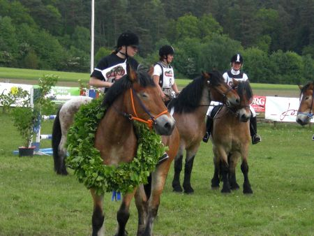 Turnier Wietzetze 2009 Pferdeleistungsschau Shownummer Kaltblutrennen Hitzacker Springturnier